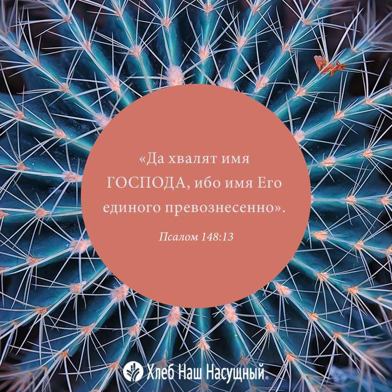 Share ODB 2020-10-26